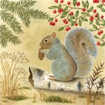 - ALICE'S COTTAGE SQUIRREL FLOUR SACK TOWEL