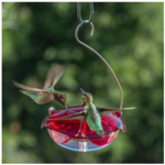 - DROLL YANKEES RUBY SIPPER HANGING HUMMINGBIRD FEEDER