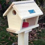 - COVESIDE SMALL BLUEBIRD FEEDER