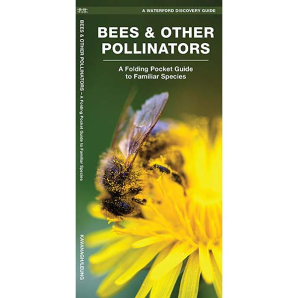- POCKET NATURALIST: BEES & OTHER POLLINATORS OF AMERICA FOLDING GUIDE