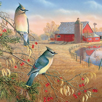 - COBBLE HILL CEDAR WAXWINGS PUZZLE 1000PC