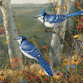 - COBBLE HILL BLUE JAYS PUZZLE 1000PC