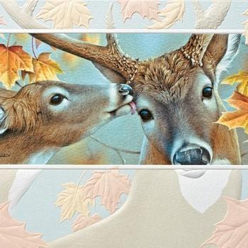 - PUMPERNICKEL PRESS BIRTHDAY CARD AUTUMN LOVE
