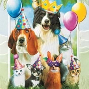 - PUMPERNICKEL PRESS BIRTHDAY CARD PARTY ANIMALS