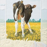 - PUMPERNICKEL PRESS BIRTHDAY CARD BABY & BUTTERFLIES