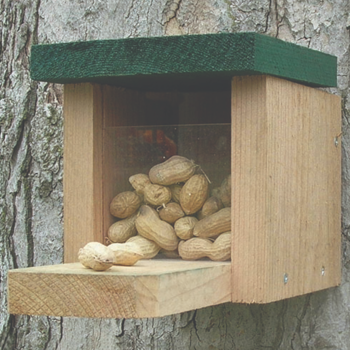 - SONGBIRD ESSENTIALS SQUIRREL FEEDER SNACK BOX