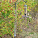 - SONGBIRD ESSENTIALS SLINKY SQUIRREL PROOF SPRING DEVICE