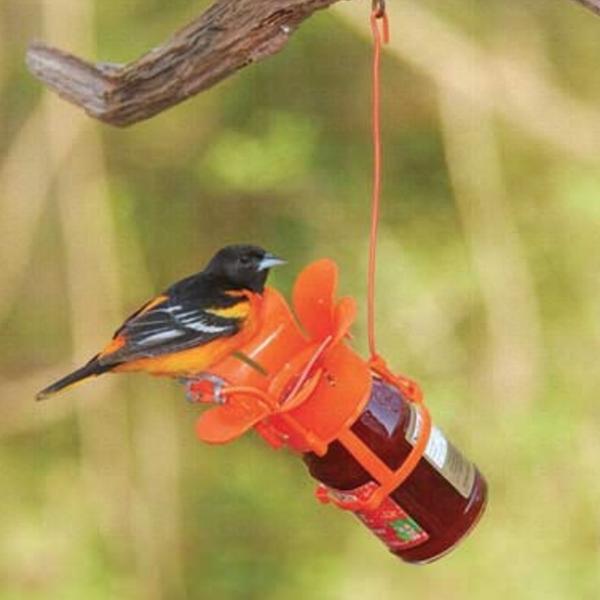 - SONGBIRD ESSENTIALS JELLY JAR FEEDER