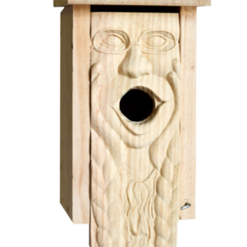- WELLIVER CARVED MOTHER EARTH BLUEBIRD HOUSE