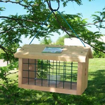 -SONGBIRD ESSENTIALS PROTECTED BLUEBIRD JAIL FEEDER SESC1040