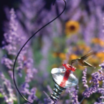 - PARASOL MINI BLOSSOM HUMMINGBIRD FEEDER ON HOOK
