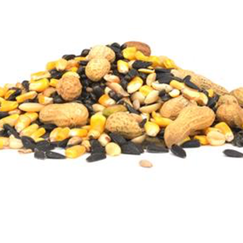 -CRITTER VITTLES SEED MIX #20 LB. STORE PICKUP ONLY