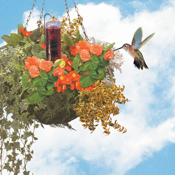 - PERKY PET HUMMINGBIRD PLANTER BASKET FEEDER
