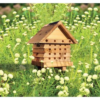 - WILDLIFE WORLD INTERACTIVE SOLITARY BEE HIVE FLIP TOP