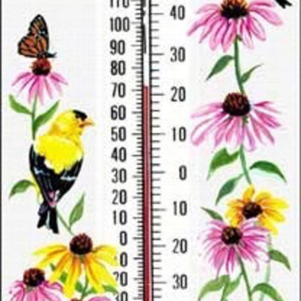 - ASPECTS GOLDFINCH WINDOW THERMOMETER