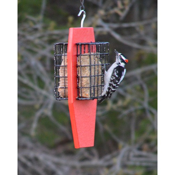 -SONGBIRD ESSENTIALS DOUBLE SUET FEEDER SERUBDSFR