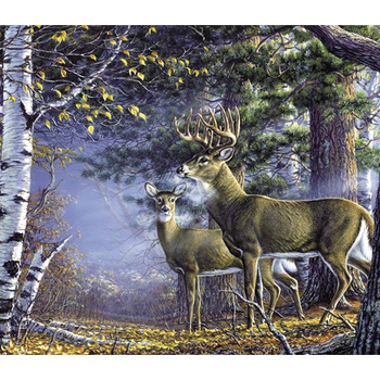 -WILLOW CREEK COLD SNAP PUZZLE 1000 PCS WC48161