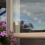 - WINDOW ALERT ASPEN LEAF WINDOW DECAL 8PK