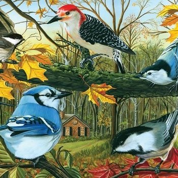 - COBBLE HILL BLUE JAY & FRIENDS PUZZLE 1000PC