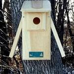 - COVESIDE OPEN 2 SIDE BLUEBIRD HOUSE