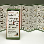- SIBLEY'S DUCKS GEESE AND SWANS OF EASTERN NORTH AMERICA FOLDING GUIDE