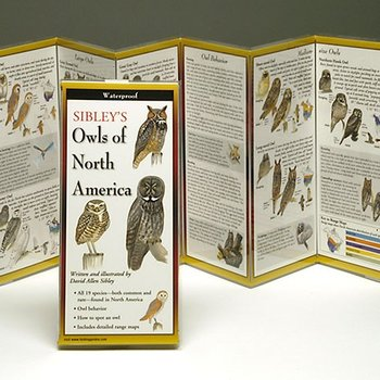 - SIBLEY'S OWLS OF NORTH AMERICA FOLDING GUIDE