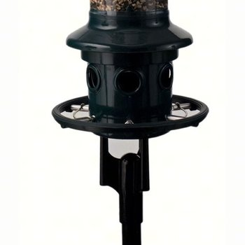 - BROME SQUIRREL BUSTER PLUS POLE ADAPTER