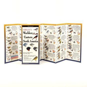 - SIBLEY'S WARBLERS OF EASTERN NORTH AMERICA FOLDING GUIDE