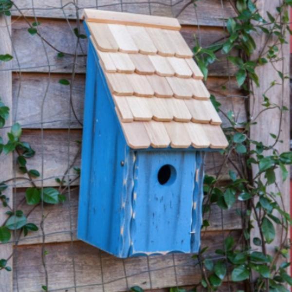 - HEARTWOOD BLUEBIRD BUNKHOUSE BLUE