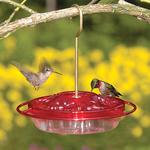 - ASPECTS HUMMINGBIRD LITTLE FANCY RED FEEDER