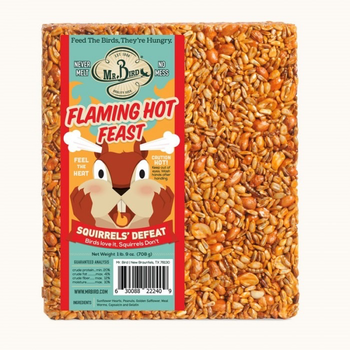 - MR BIRD FLAMING HOT FEAST LARGE SEED CAKE