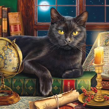 - SUNS OUT PUZZLES BLACK CAT BY CANDLELIGHT 500+ PC