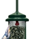 - BROME SQUIRREL BUSTER STANDARD FEEDER