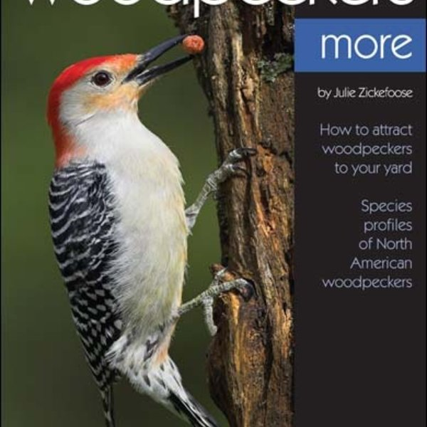 - BIRD WATCHER'S DIGEST: ENJOYING WOODPECKERS MORE