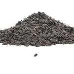 - BLACK OIL SUNFLOWER SEED 5 LB. BAG