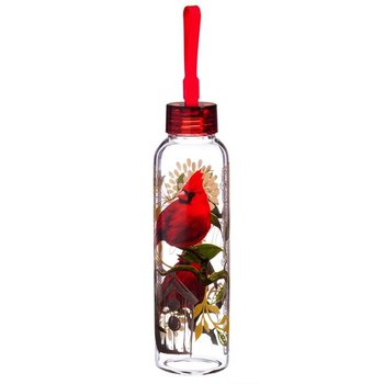 - EVERGREEN CARDINALS GLASS WATER BOTTLE
