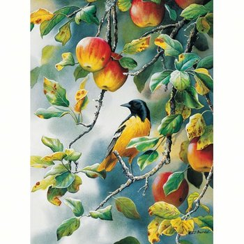 - COBBLE HILL NORTHERN ORIOLE PUZZLE 500PC