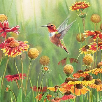 - COBBLE HILL RUFOUS HUMMINGBIRD PUZZLE 500 PC