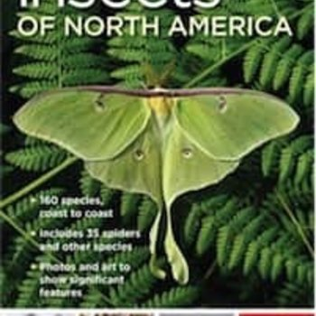 - NATIONAL GEOGRAPHIC POCKET GUIDE TO INSECTS OF NORTH AMERICA