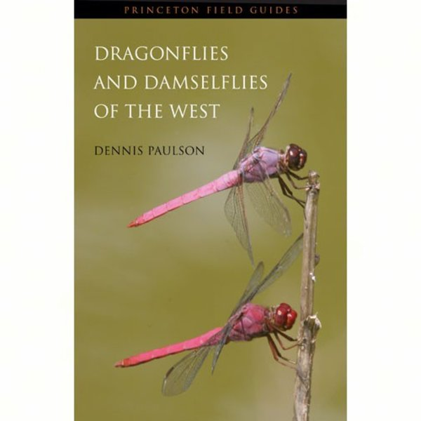 - PFG: DRAGONFLIES AND DAMSELFLIES OF THE WEST