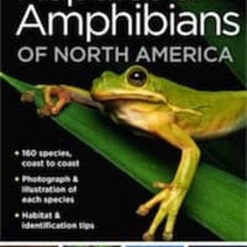 - NATIONAL GEOGRAPHIC POCKET GUIDE TO REPTILES OF NORTH AMERICA
