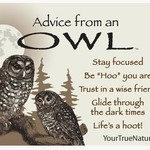 -ADVICE FROM AN OWL MAGNET