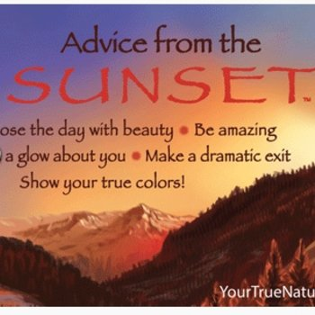 -ADVICE FROM A SUNSET MAGNET