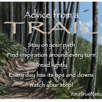 -ADVICE FROM A TRAIL MAGNET