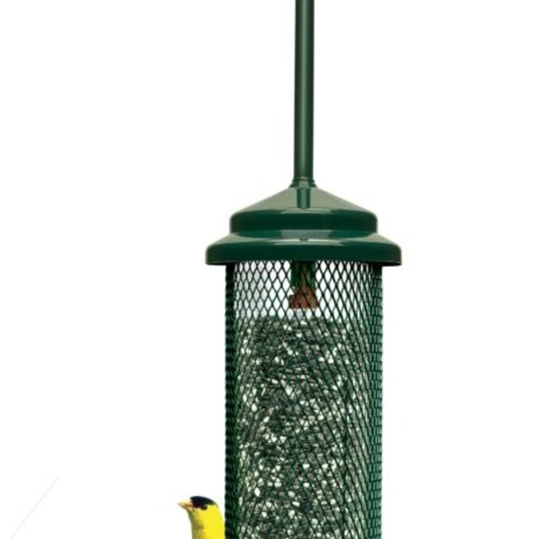 - BROME SQUIRREL BUSTER LEGACY FEEDER