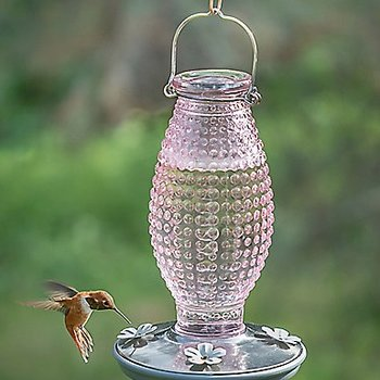 - PERKY PET PINK HOBNAIL HUMMINGBIRD FEEDER