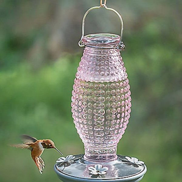 - PERKY PET PINK HOBNAIL HUMMINGBIRD FEEDER