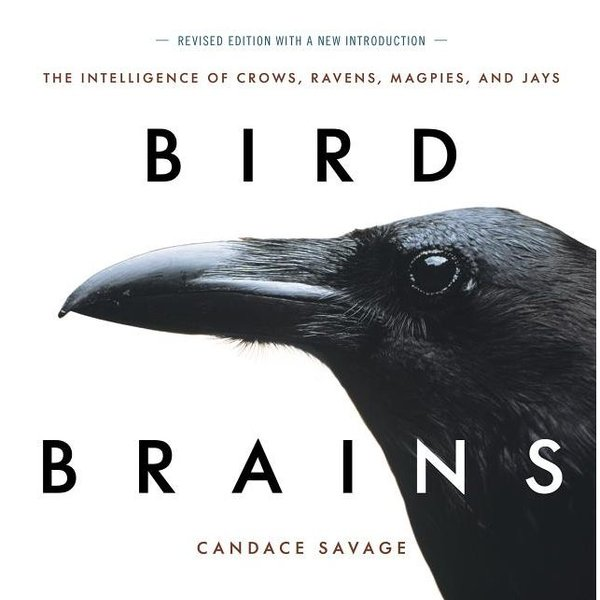 - BIRD BRAINS: THE INTELLIGENCE OF CROWS, RAVENS, MAGPIES AND JAYS