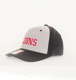 Richardson LIONS Fitted Hat