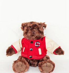 Varsity Bear